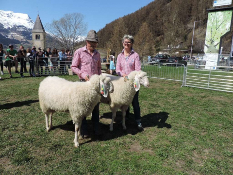 60-jähriges-Jubiläum-des-SZV-Obervinschgau-19